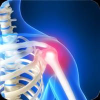 Gavric Chiropractic